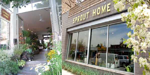 sprouthome